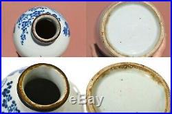 1900's Chinese Blue & White Porcelain Bottle Vase Chirography Chocolate Rim