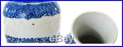 19th Century Chinese Blue & White Porcelain Vase with Flowers
