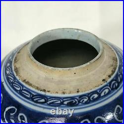 19th Century Chinese Porcelain Blue & White Decorated Jar