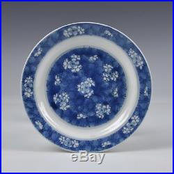 A Chinese Blue & White Porcelain 18th Ct Kangxi Period Chenghua Marked Plate