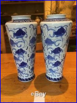 A Pair Of 14 Tall Blue & White Hand Painted Chinese Porcelain Vases Fish