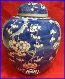 Antique Chinese Blue & White Prunes Blossom Porcelain Ginger Jar Vase Urn 9 3/4