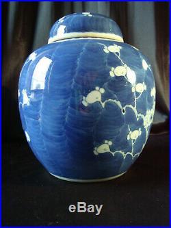 C19th Chinese Export blue & white porcelain Ginger Jar & Cover. Prunus in flower