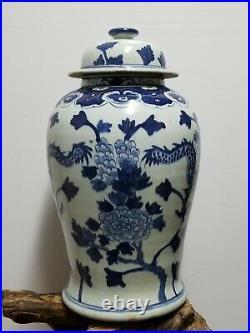 Chinese Blue & White Porcelain Glaze Ginger Jar vases