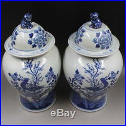 Chinese Old Blue White Bird And Flower Lion Head Pattern Porcelain Temple Jars