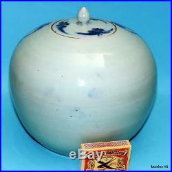 Chinese Porcelain Antique Celadon Phoenix Blue White 19thc Qing Vase