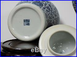 Pair Of 14 Blue & White Chinese Porcelain Temple Jars / Vases Asian Oriental