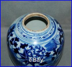 Unusual Antique Chinese Blue White Porcelain Ginger Jar Flowers Landscape Dragon