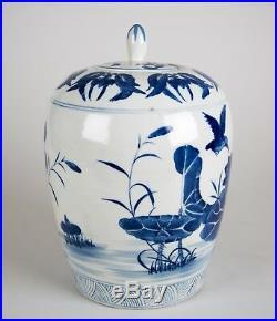 Vintage Chinese Blue & White Porcelain Ginger Jar Vase Hummingbird Design 12.5