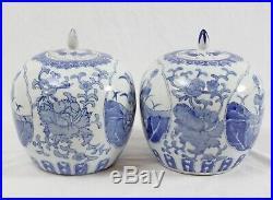 Vintage Chinese Porcelain 10 Ginger Jar Pair Blue White Bird Floral Kingfisher
